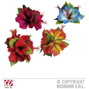 Widmann Clama Hawaii hibiscus